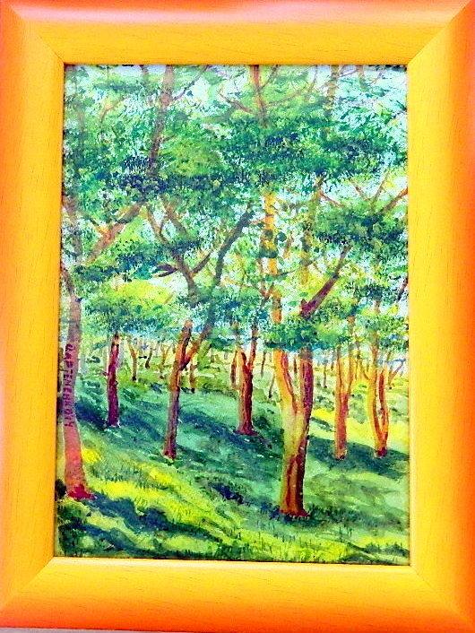 Дюковский парк, залитый солнцем