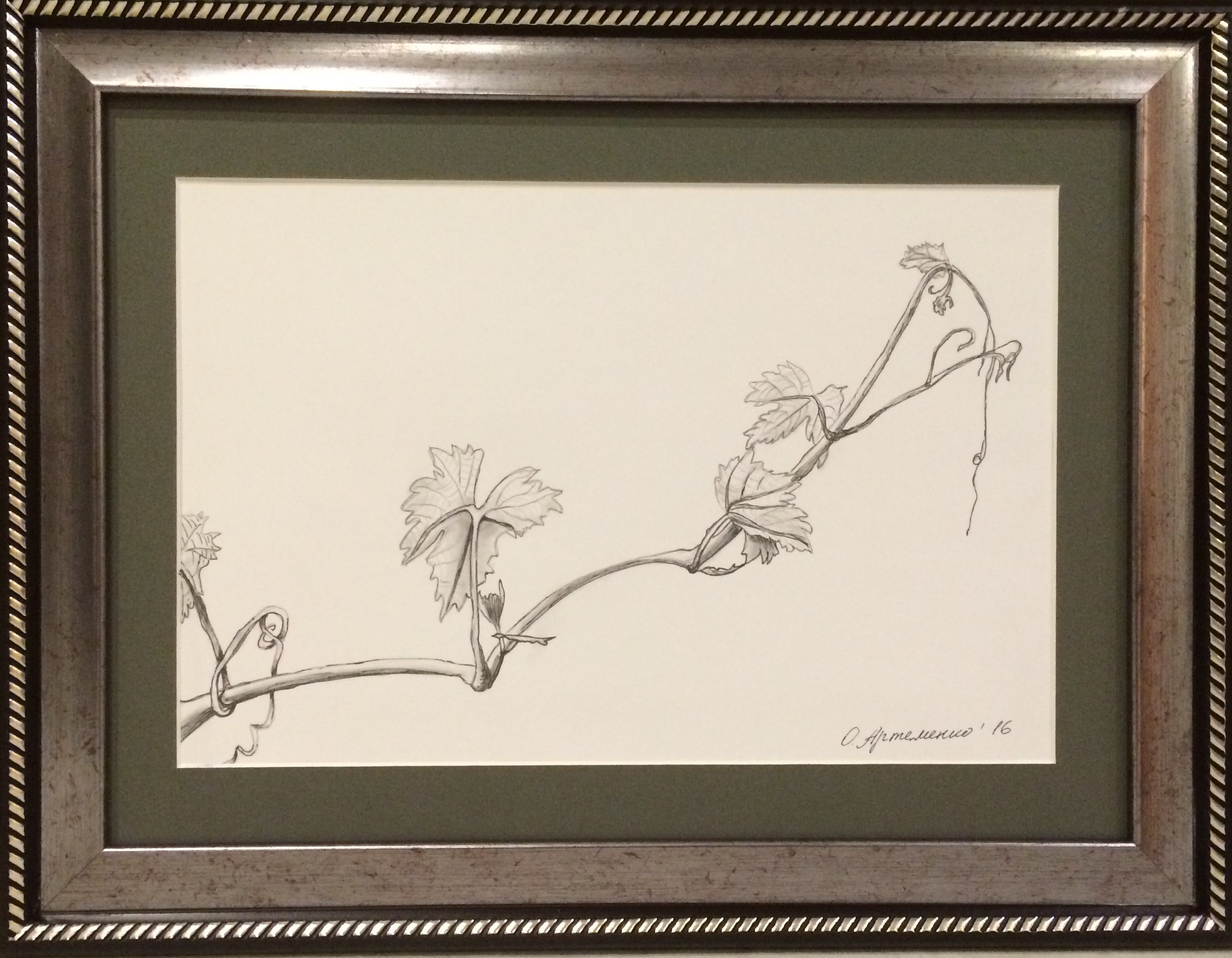 карандашный рисунок
