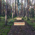 одесса_расстановки
